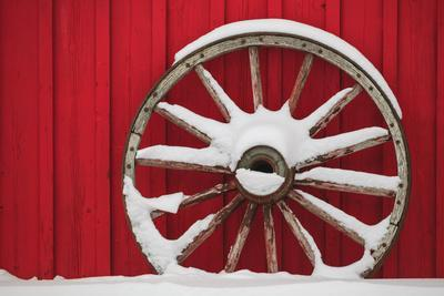 Snow-covered wagon wheels against red barn near town of Banff, Canadian Rockies, Alberta, Canada
