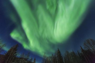 Aurora borealis, Northern Lights, near Fairbanks, Alaska