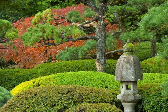 Pagoda Autumn Landscape Portland Japanese Garden Portland