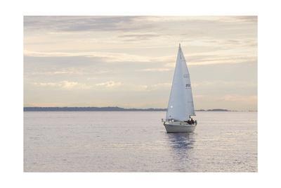 Sailboat in Semiahmoo Bay