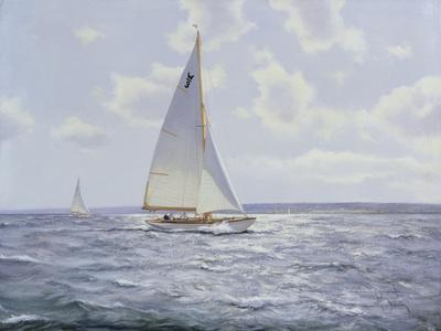 The Shimmering Sea, 2005