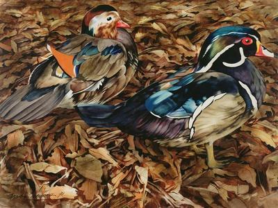 Carolonia Ducks, 1991
