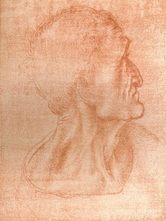 Study for the head of Judas in `The Last Supper`, c1494-c1499 (1883)