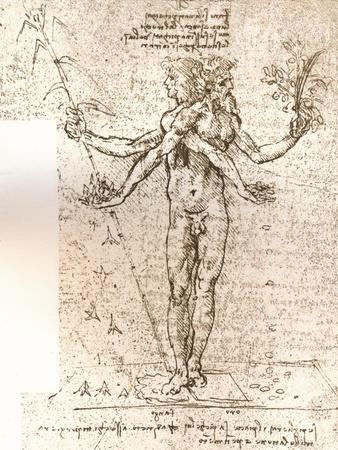 Drawing of an allegorical composition, c1472-c1519 (1883)
