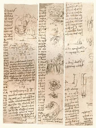 Three drawings, c1472-c1519 (1883)