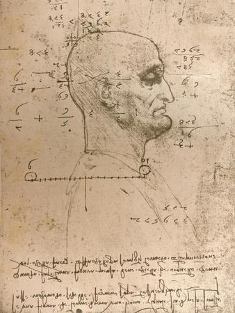 Drawing of the head of a criminal, c1472-c1519 (1883)