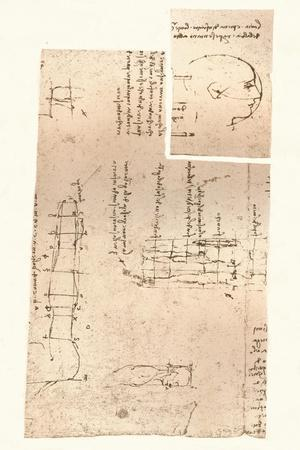 Two drawings illustrating the theory of the proportions of the human figure, c1472-c1519 (1883)