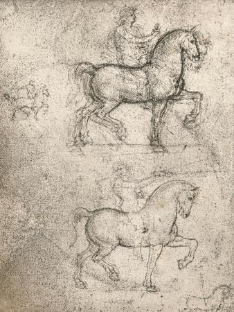 Study for the Sforza Monument, c1482-c1499 (1883)