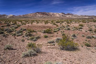 The USA, California, Death Valley National Park, scenery on the Dantes View Road