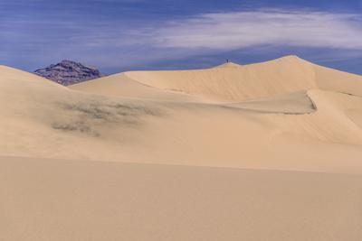 The USA, California, Death Valley National Park, Stovepipe Wells, Mesquite Flat Sand Dunes