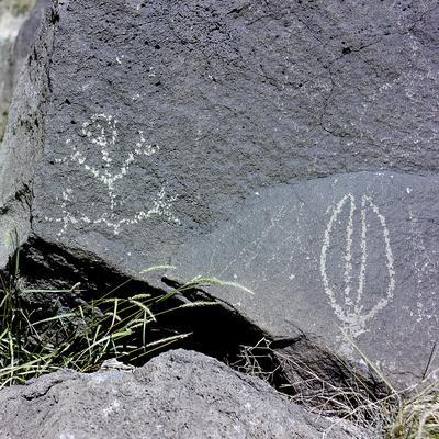 The Rio Grande petroglyphs, Native American, New Mexico, USA
