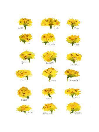 Herd of Dandelions