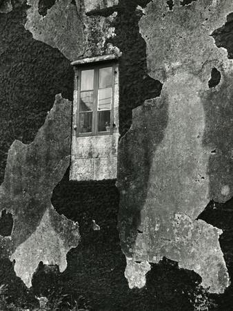 Window, Europe, 1971