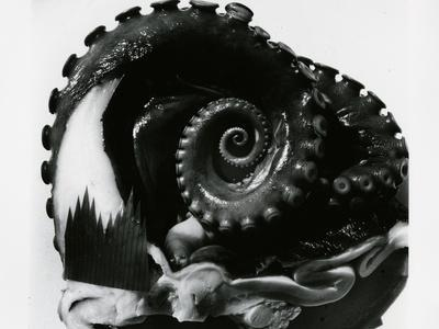 Octopus Tentacles, c. 1980
