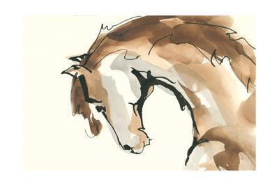 Horse Head II