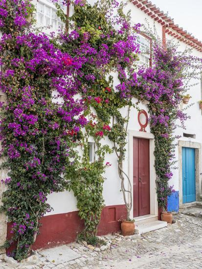 Portugal Obidos Beautiful Bougainvillea Blooming In The Town Of Obidos Portugal Photographic Print Julie Eggers Allposters Com