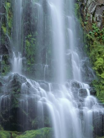 USA, Oregon. Willamette National Forest, Three Sisters Wilderness, Lower Proxy Falls and lush moss.