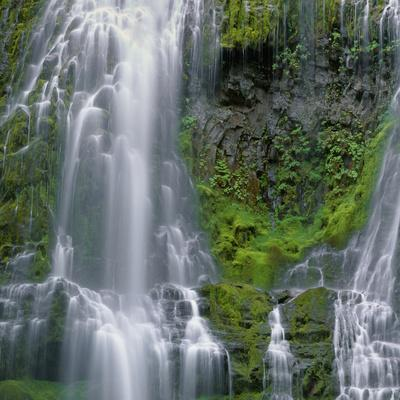 OR, Willamette NF. Three Sisters Wilderness, Lower Proxy Falls displays multiple cascades