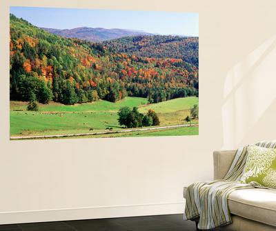 View of Peacham Hills in Autumn, Northeast Kingdom, Vermont, USA