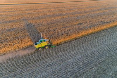 Aerial view of combine-harvester in field, Marion Co,. Illinois, USA
