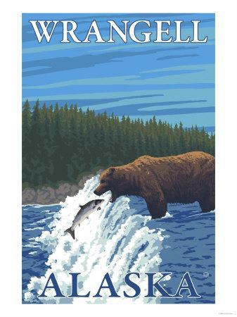 Bear Fishing in River, Wrangell, Alaska