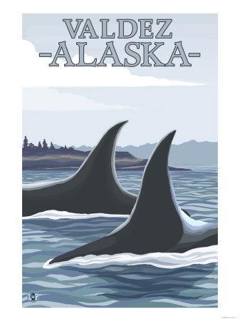 Orca Whales No.1, Valdez, Alaska