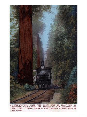 Santa Cruz, California - Big Tree Railroad Station