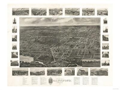 Wallingford, Connecticut - Panoramic Map