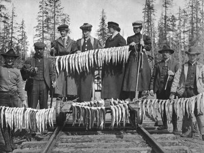 View of Men and Women with their Huge Trout Catch - Seward, AK