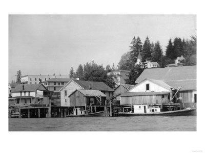 Waterfront View of the Town - Cathlamet, WA
