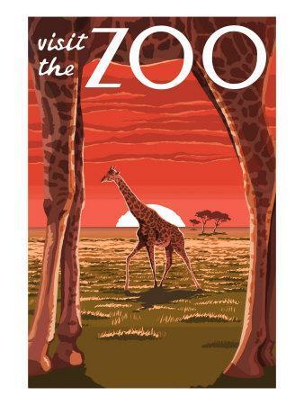 Visit the Zoo, Giraffe Scene