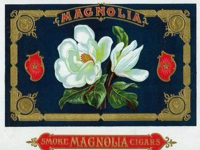 Magnolia Brand Cigar Box Label