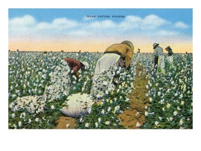Texas - View of People Picking Texan Cotton, c.1940