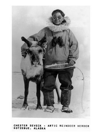 Kotzebue, Alaska - Chester Seveck, Arctic Reindeer Herder