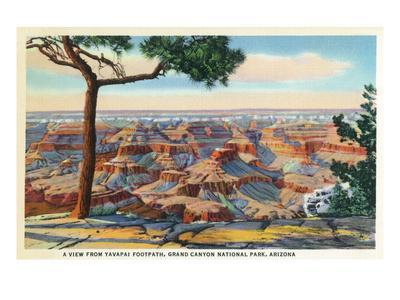 Grand Canyon Nat'l Park, Arizona - Yavapai Footpath View of Canyon