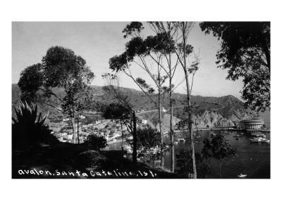 Santa Catalina Island, California - View of Avalon