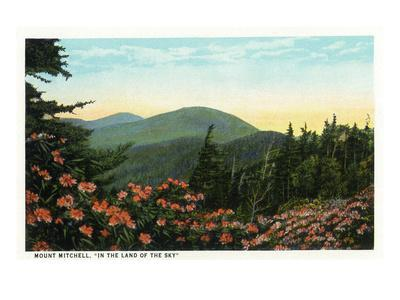 Blue Ridge Mountains, North Carolina - Mount Mitchelll Scene