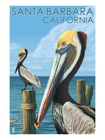 Santa Barbara, California - Pelican