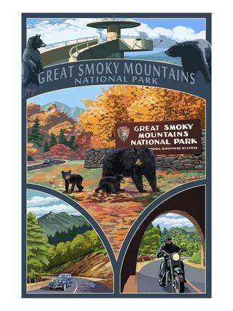 Montage - Great Smoky Mountains National Park, TN
