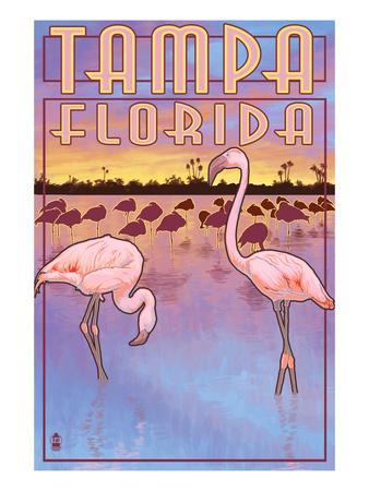 Tampa, Florida - Flamingos