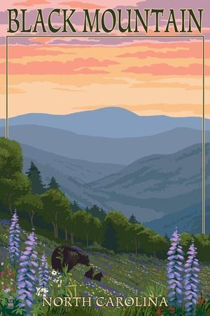 Black Mountain, North Carolina - Spring Flowers and Bear Family