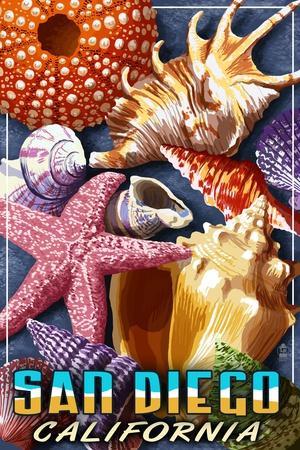 San Diego, California - Shell Montage