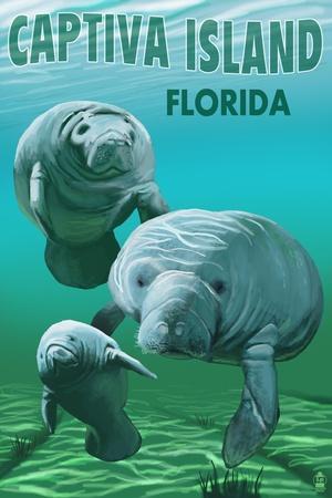 Captiva Island, Florida - Manatees