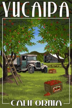 Yucaipa, California - Apple Orchard Harvest
