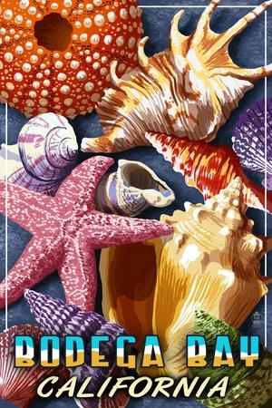 Bodega Bay, California - Shell Montage