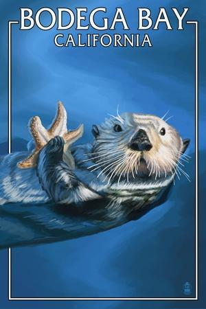Bodega Bay, California - Sea Otter