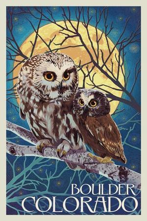 Boulder, Colorado - Owl and Owlet