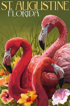 St. Augustine, Florida - Flamingos