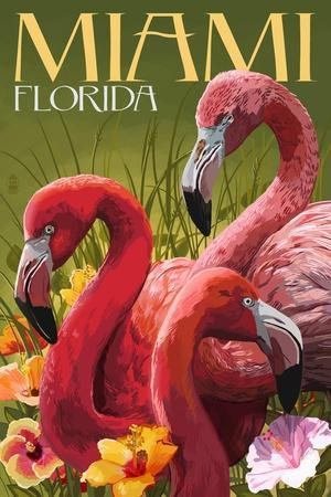 Miami, Florida - Flamingos