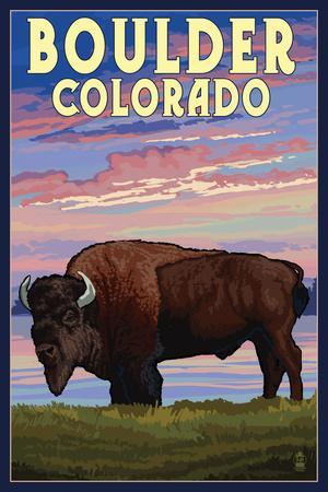 Boulder, Colorado - Bison and Sunset